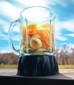 8 Easy Food Blender Tips